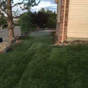Landscaping 2 - Pipo's Landscaping