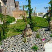 Landscaping 4 - Pipo's Landscaping