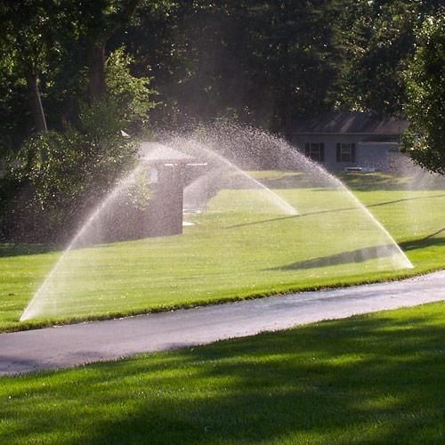 Sprinkler Installation Pipo's Lawn Care